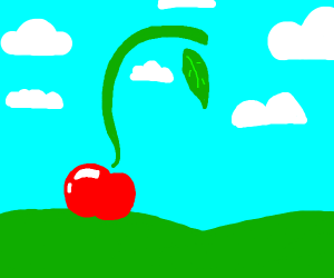 apple with a long stem