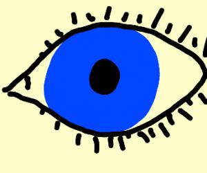 An blue eye