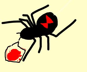 Menacing black widow spider wants blood