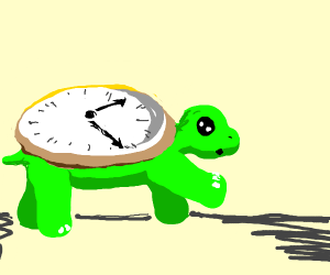 Turtle time