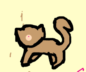 Suffer cat