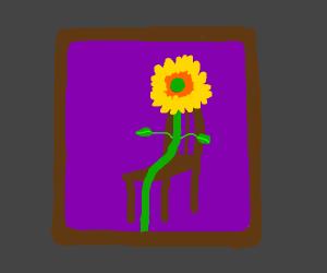A portrait of a sunflower