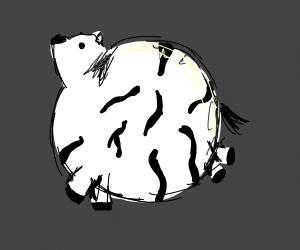 Round Zebra
