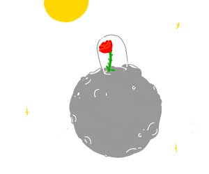 The rose from The Little Prince.