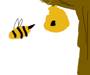 A bee leaving a beehive