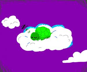 turtle asleep on a cloud