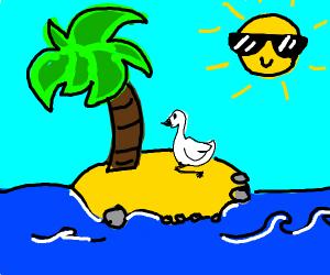 Swan on an Island