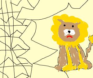 Sad lion behind bars