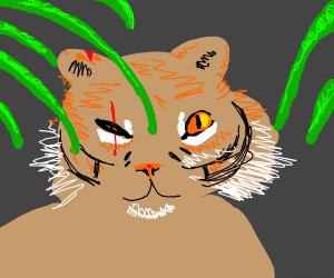 bloody leaf tiger