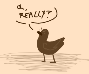 Duck says O RLY?