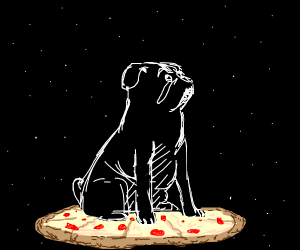 Dog flying a pizza through space
