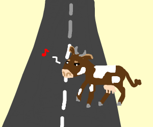 A cow walks across the road