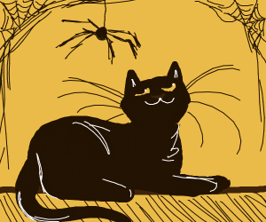 Spider and cat chillin'