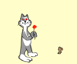 Tom loves jerry now