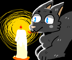 cat using a candle