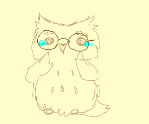 Nervous owl with glasses