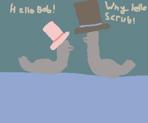 ducks conversing by a lake