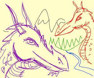 Purple dragon and red dragon