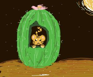 Tiger stuck in between a cactus