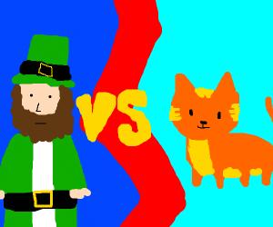 irish man VS orange cat