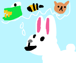 Rabbit learns animal abc