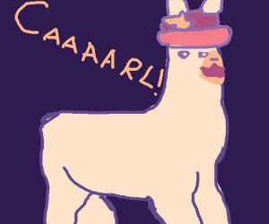 llamas with hats (caaaarl)