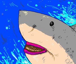 Shark forgot about his dentist appointment