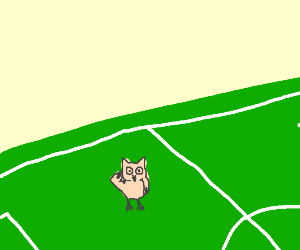 owl saluting on a soccer field