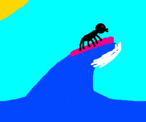 Surfing ant.