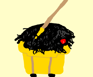Sheep dog is a mop
