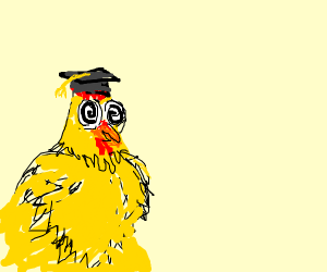 Fluffy crazy chicken with student hat
