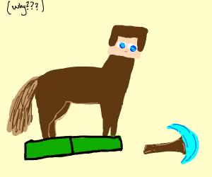 Minecraft Steve... as a pony....(why)