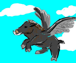 Boar Flying