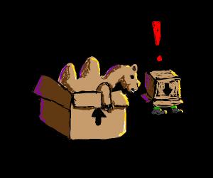 a camel in a box