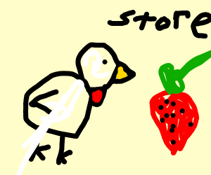chicken buys strawberries at the store