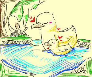 Duck and its parent