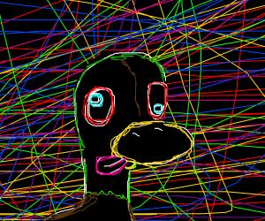 duck tries lsd