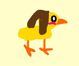 Duck with droopy dog ears