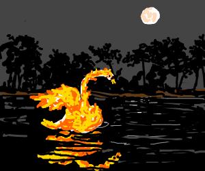 burning swan
