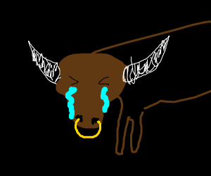crying bull