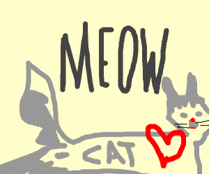 meow, cat loves you!