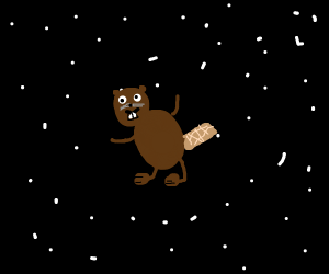 A beaver floating through space