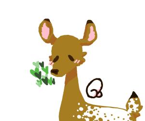 deer flying