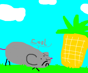 Mouse likes pinapple