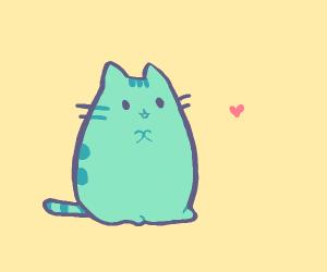 kitten love :3