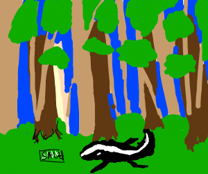 Salty skunk in the forest