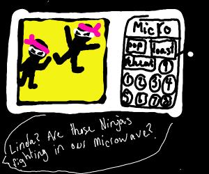 ninja fight inside a microwave