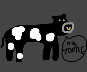 cow correcting grammar (iT's YoU'rE)