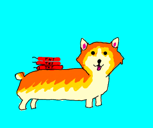 A cute corgi with explosives on its back
