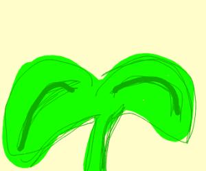 make a plant doodle